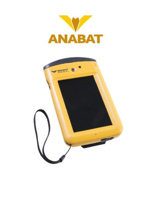 bat detector-1